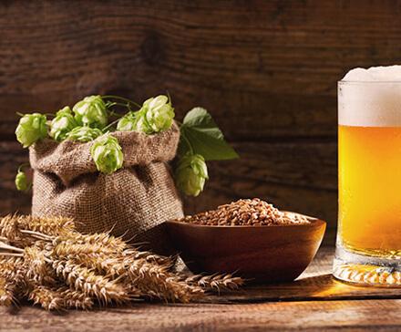 Jak zrobić piwo? Gatunki piwa i sekrety domowego warzenia