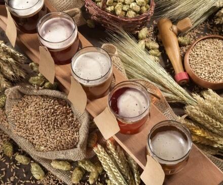 Wszystko o piwie. Gatunki, smaki, domowe warzenie piwa