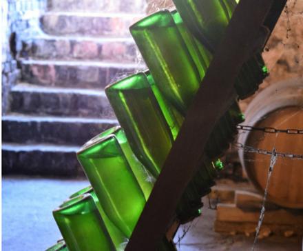 Galeria: Zwiedzanie winnicy jesienią
