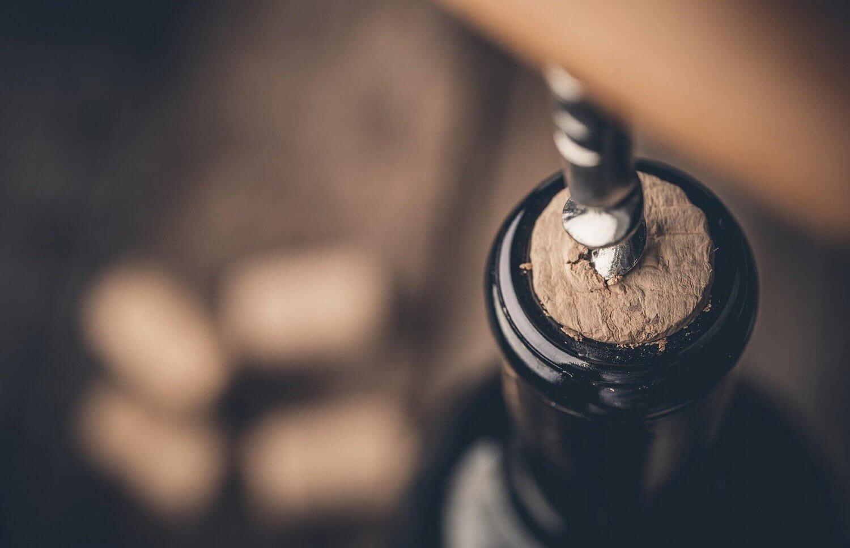 warsztaty o winie