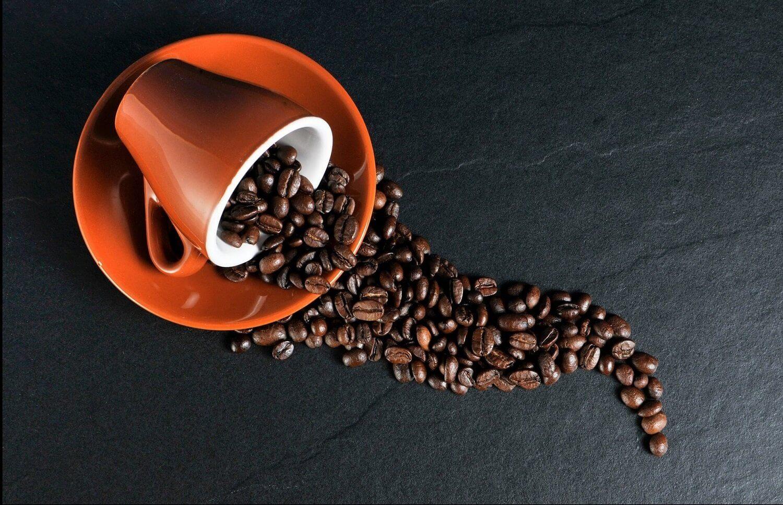 Degustacja kawy