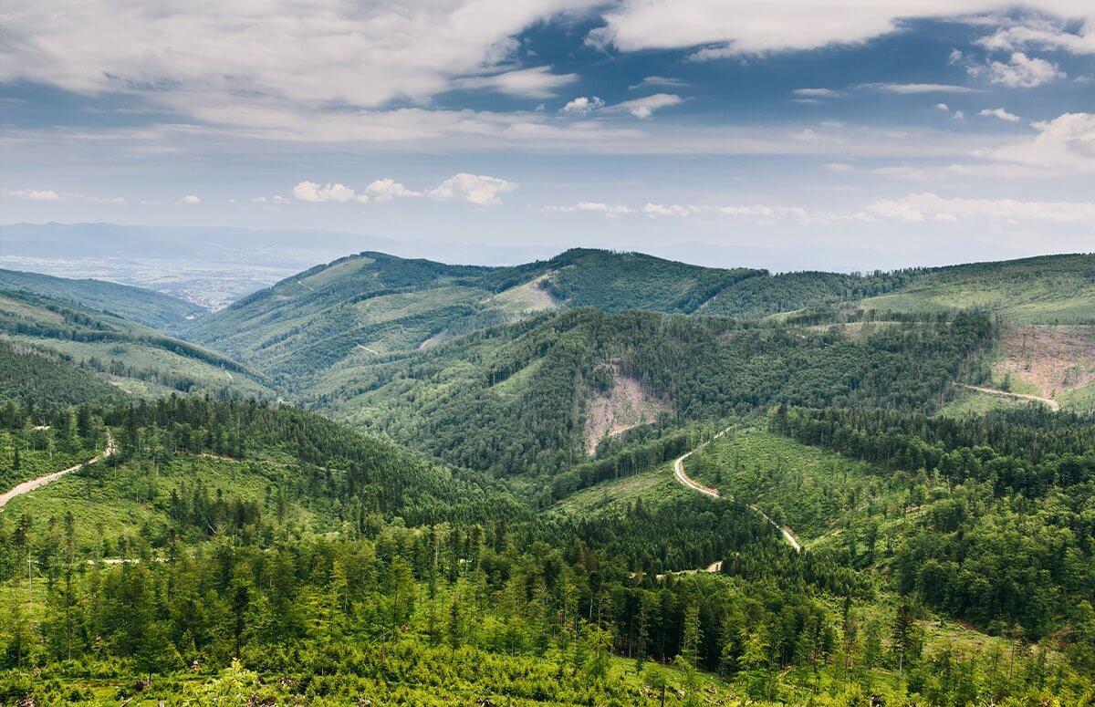 Paralotnia i off road w górach