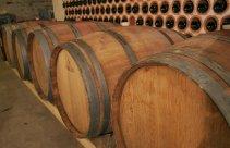 Wino przechowywane w beczkach w winnicy