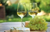 Degustacja wina i serów