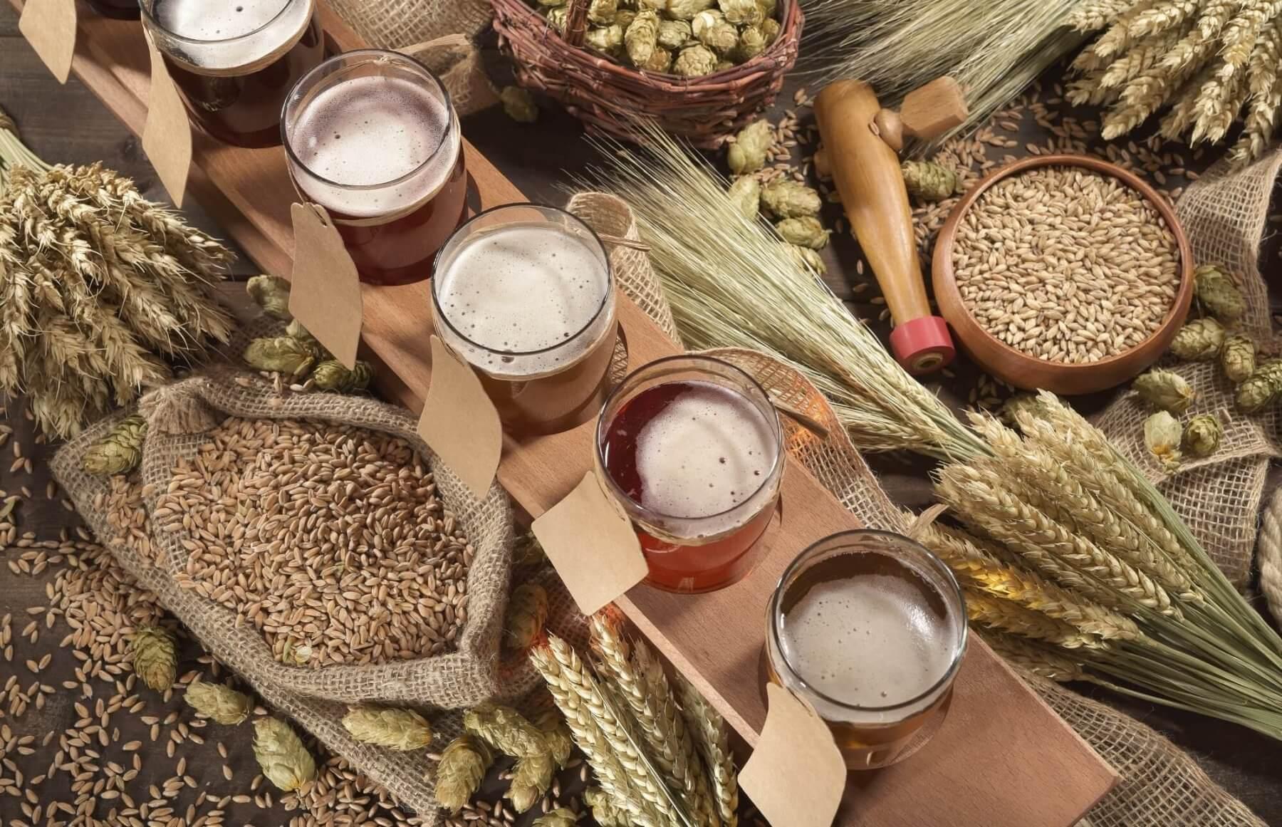 Różne smaki piwa - warsztaty kiperskie