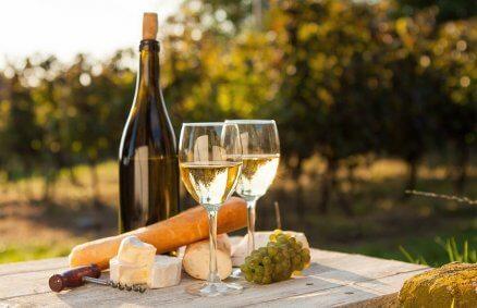 Degustacja wina w winnicy - Mazowsze