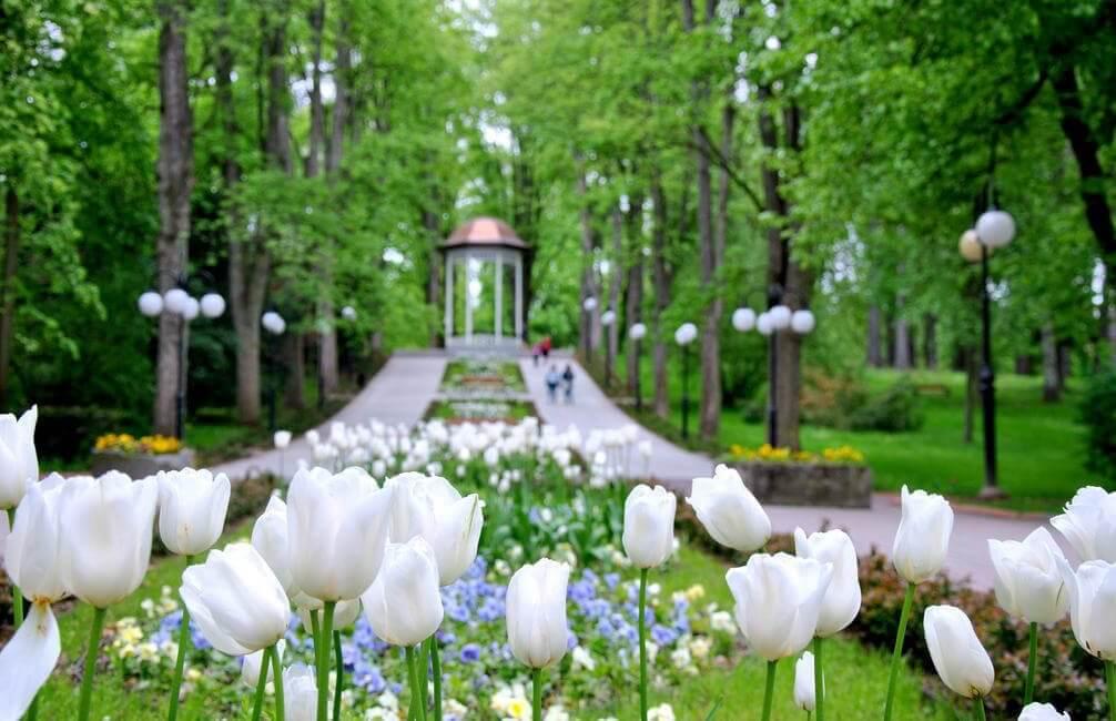 Park Zdrojowy w Polanicy