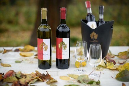 Wino z winnicy Dwórzno