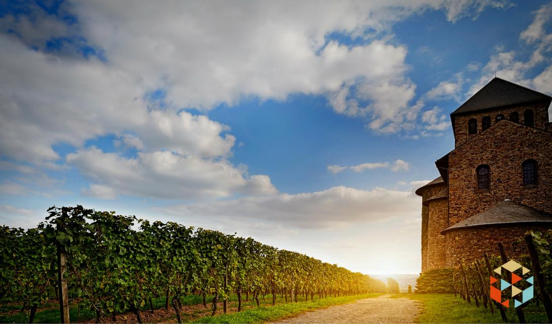 Degustacja wina w winnicy w prezencie dla młodych