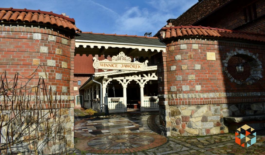 Zwiedzanie winnicy we Wrocławiu.